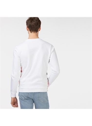 Lacoste Sweatshirt Beyaz